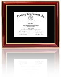 Professional Engineer Certificate Frame